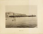 Theodor Ziegler Photo Scrapbook [page 022 Valparaiso]