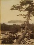 Theodor Ziegler Photo Scrapbook [page 151 Enoshima] by Theodor Ziegler, John Alan Ziegler, and Nancy Nuckles Colyar